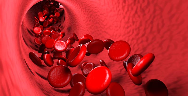 detalle-sangre.png